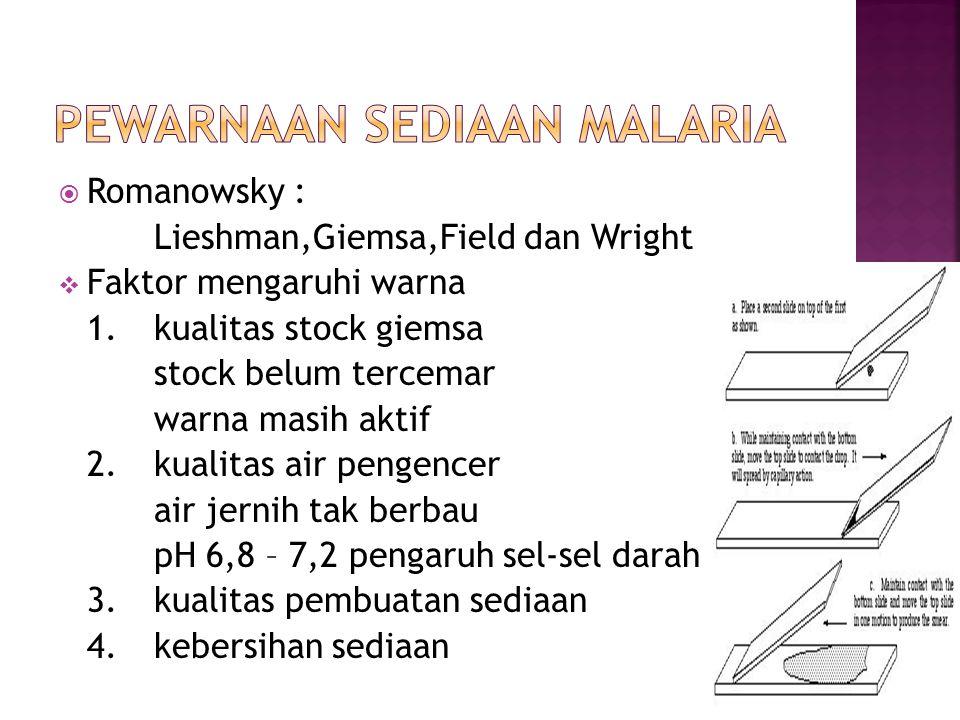  Romanowsky : Lieshman,Giemsa,Field dan Wright  Faktor mengaruhi warna 1.kualitas stock giemsa stock belum tercemar warna masih aktif 2.kualitas air pengencer air jernih tak berbau pH 6,8 – 7,2 pengaruh sel-sel darah 3.kualitas pembuatan sediaan 4.kebersihan sediaan