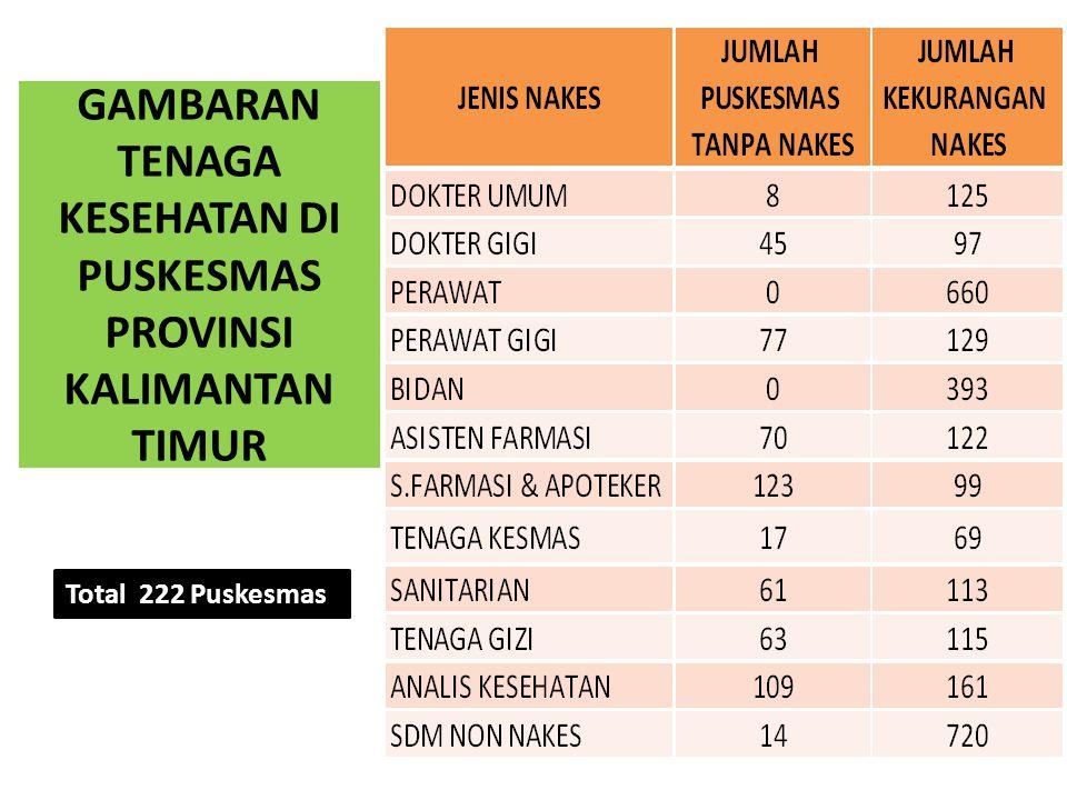 Total 222 Puskesmas GAMBARAN TENAGA KESEHATAN DI PUSKESMAS PROVINSI KALIMANTAN TIMUR