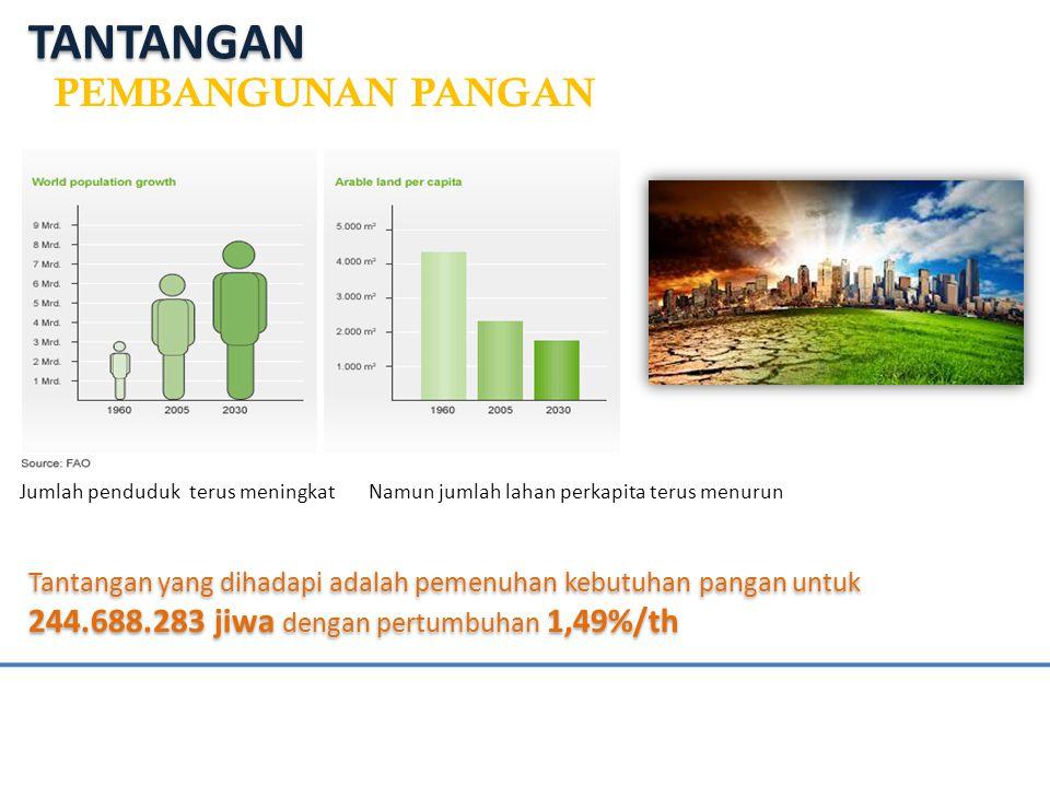 Tantangan yang dihadapi adalah pemenuhan kebutuhan pangan untuk 244.688.283 jiwa dengan pertumbuhan 1,49%/th Jumlah penduduk terus meningkat Namun jumlah lahan perkapita terus menurun TANTANGAN PEMBANGUNAN PANGAN