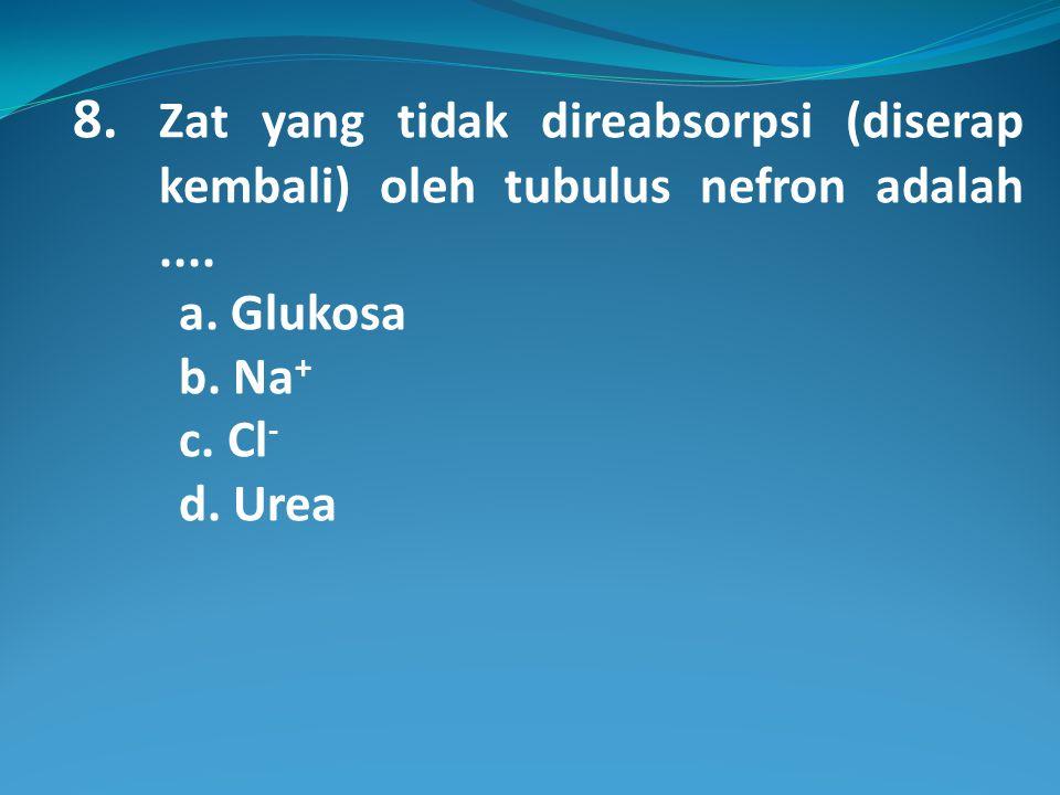 8.Zat yang tidak direabsorpsi (diserap kembali) oleh tubulus nefron adalah....