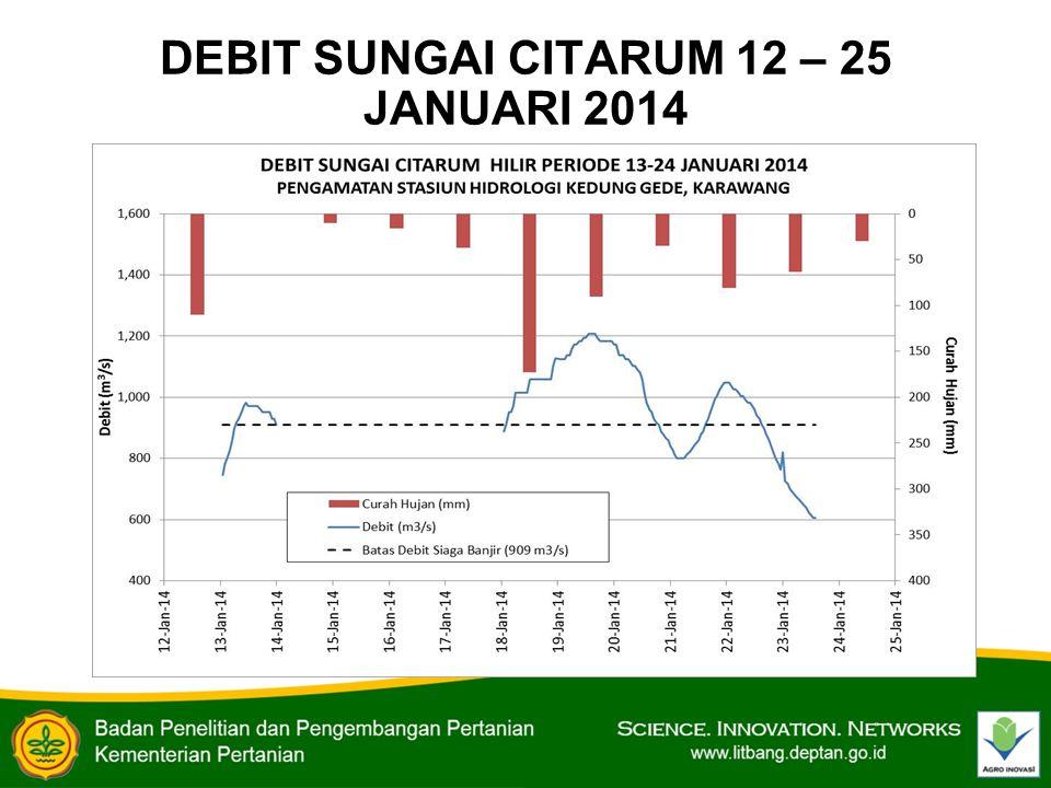 DEBIT SUNGAI CITARUM 12 – 25 JANUARI 2014