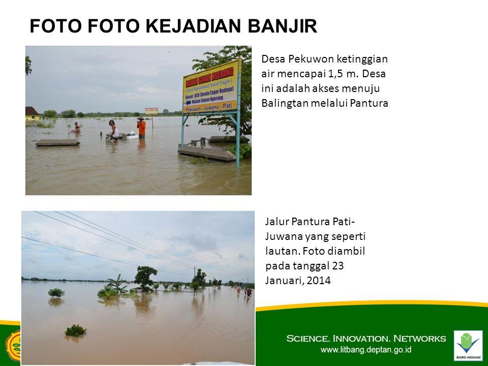 FOTO FOTO KEJADIAN BANJIR Desa Pekuwon ketinggian air mencapai 1,5 m. Desa ini adalah akses menuju Balingtan melalui Pantura Jalur Pantura Pati- Juwan