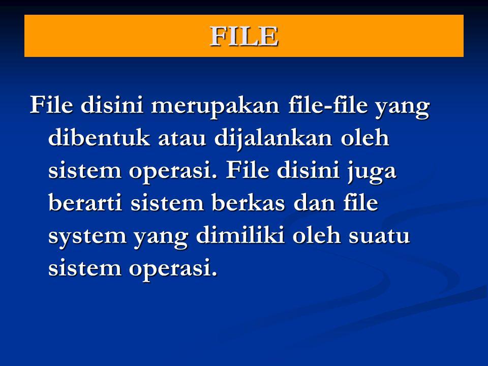 FILE File disini merupakan file-file yang dibentuk atau dijalankan oleh sistem operasi.