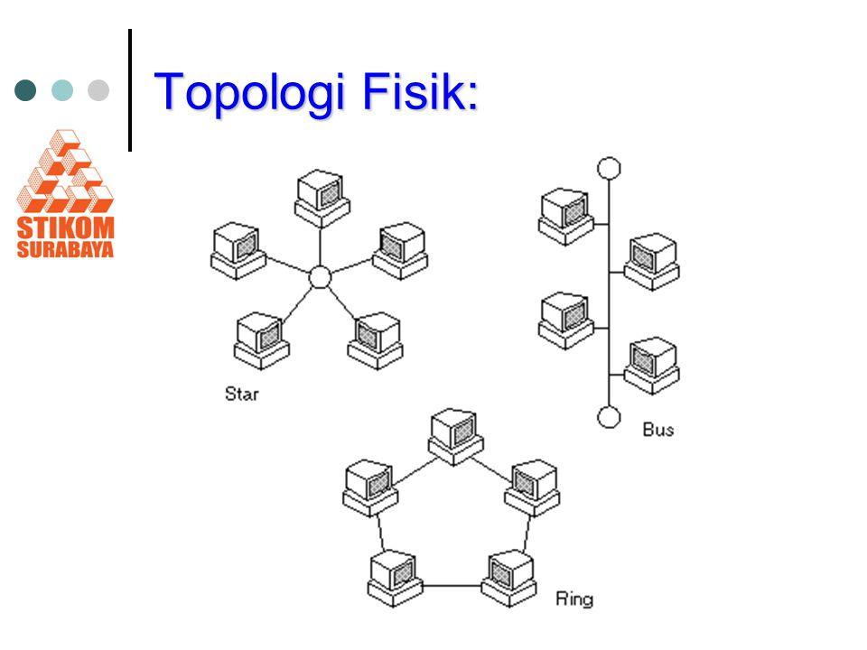 Topologi Fisik: