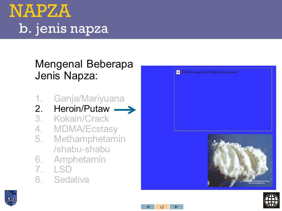 Mengenal Beberapa Jenis Napza: 1.Ganja/Mariyuana 2.Heroin/Putaw 3.Kokain/Crack 4.MDMA/Ecstasy 5.Methamphetamin /shabu-shabu 6.Amphetamin 7.LSD 8.Sedat