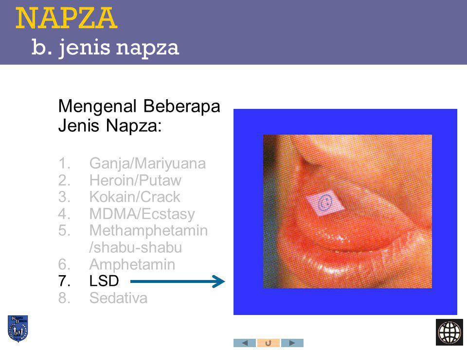 NAPZA b. jenis napza Mengenal Beberapa Jenis Napza: 1.Ganja/Mariyuana 2.Heroin/Putaw 3.Kokain/Crack 4.MDMA/Ecstasy 5.Methamphetamin /shabu-shabu 6.Amp