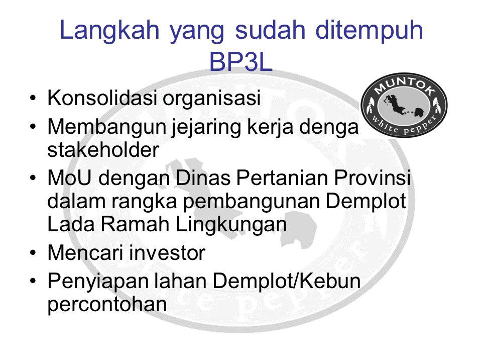 Langkah yang sudah ditempuh BP3L Konsolidasi organisasi Membangun jejaring kerja dengan stakeholder MoU dengan Dinas Pertanian Provinsi dalam rangka p