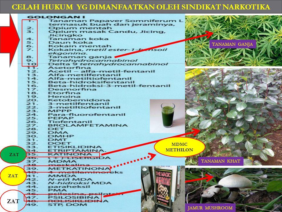  1.SYNTHETIC CANNABINOIDS  2.SYNTHETIC CATHINONES  3.KETAMINE  4.PHENETHYLAMINES  5.PIPARAZINES  6.PLANT-BASED SUBSTANCES  ( KRATOM, KHAT, SALV