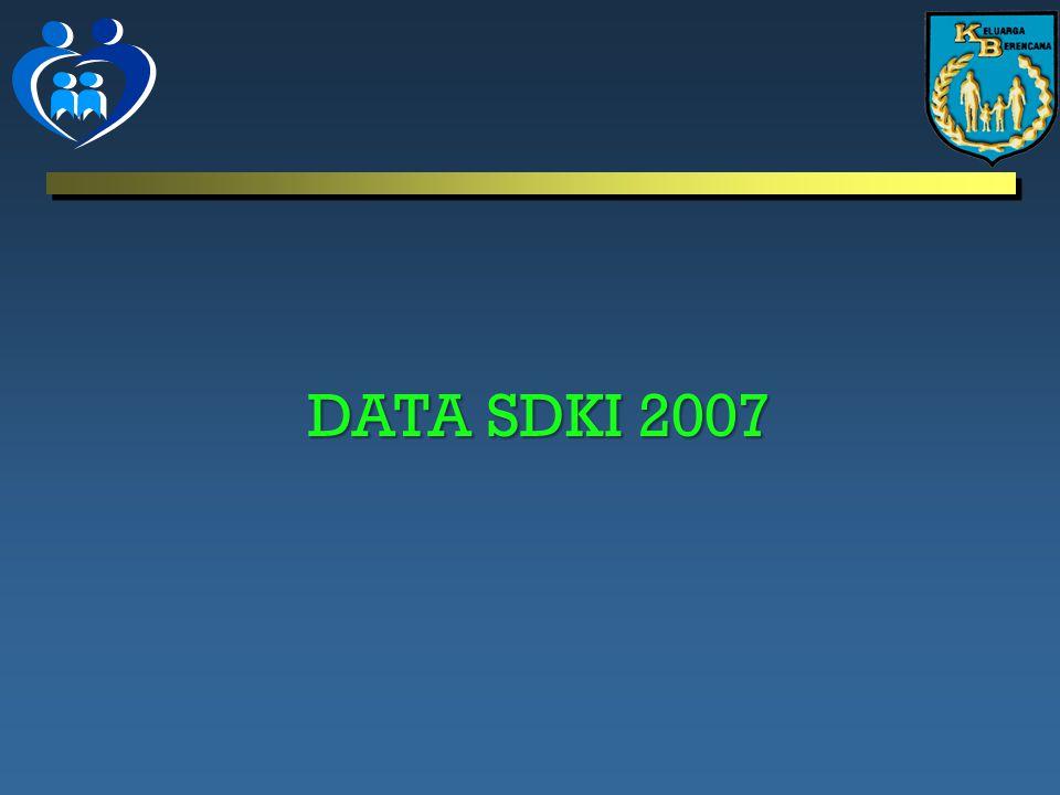 DATA SDKI 2007