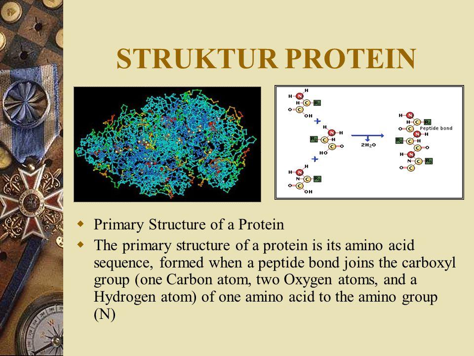 STRUKTUR MEMBRAN SEL Membran Plasma tersusun dari senyawa kimia Lipoprotein (gabungan dari senyawa lemak atau Lipid dan senyawa Protein), senyawa lema