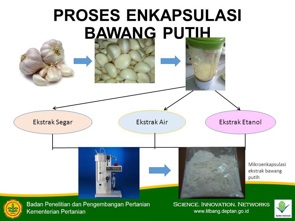 PROSES ENKAPSULASI BAWANG PUTIH Ekstrak SegarEkstrak AirEkstrak Etanol Mikroenkapsulasi ekstrak bawang putih