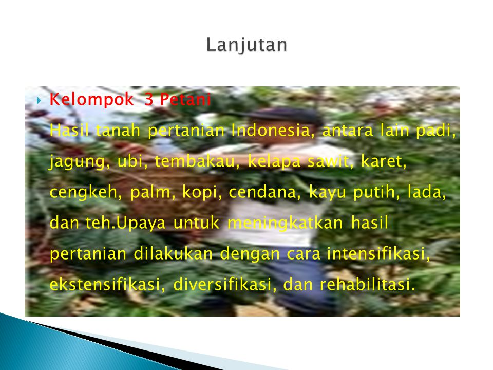  Kelompok 3 Petani Hasil tanah pertanian Indonesia, antara lain padi, jagung, ubi, tembakau, kelapa sawit, karet, cengkeh, palm, kopi, cendana, kayu