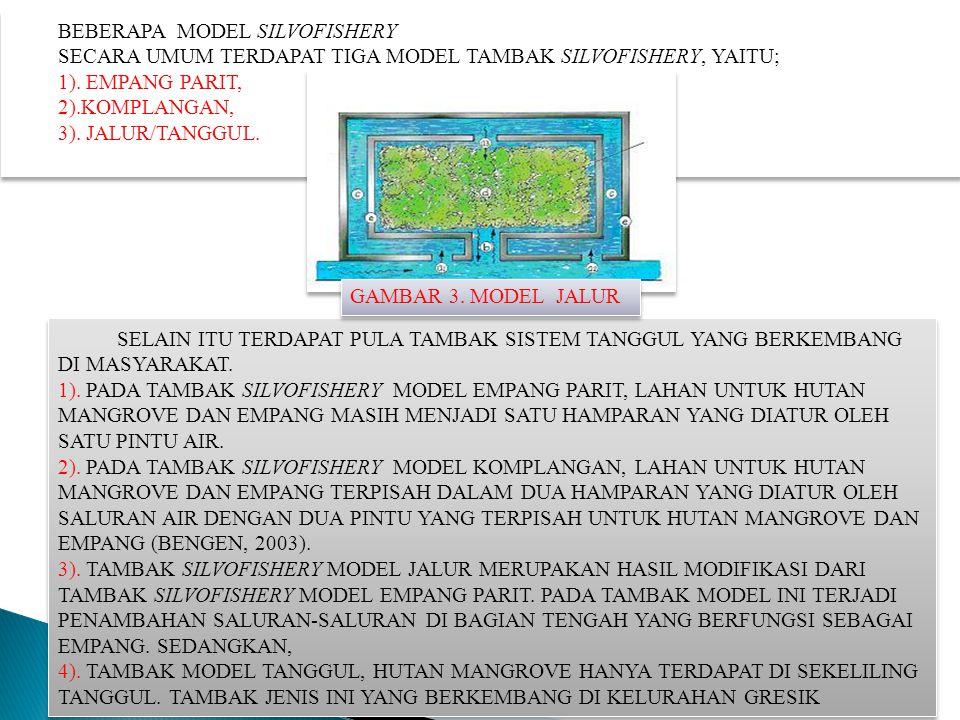 BEBERAPA MODEL SILVOFISHERY SECARA UMUM TERDAPAT TIGA MODEL TAMBAK SILVOFISHERY, YAITU; 1). EMPANG PARIT, 2).KOMPLANGAN, 3). JALUR/TANGGUL. BEBERAPA M