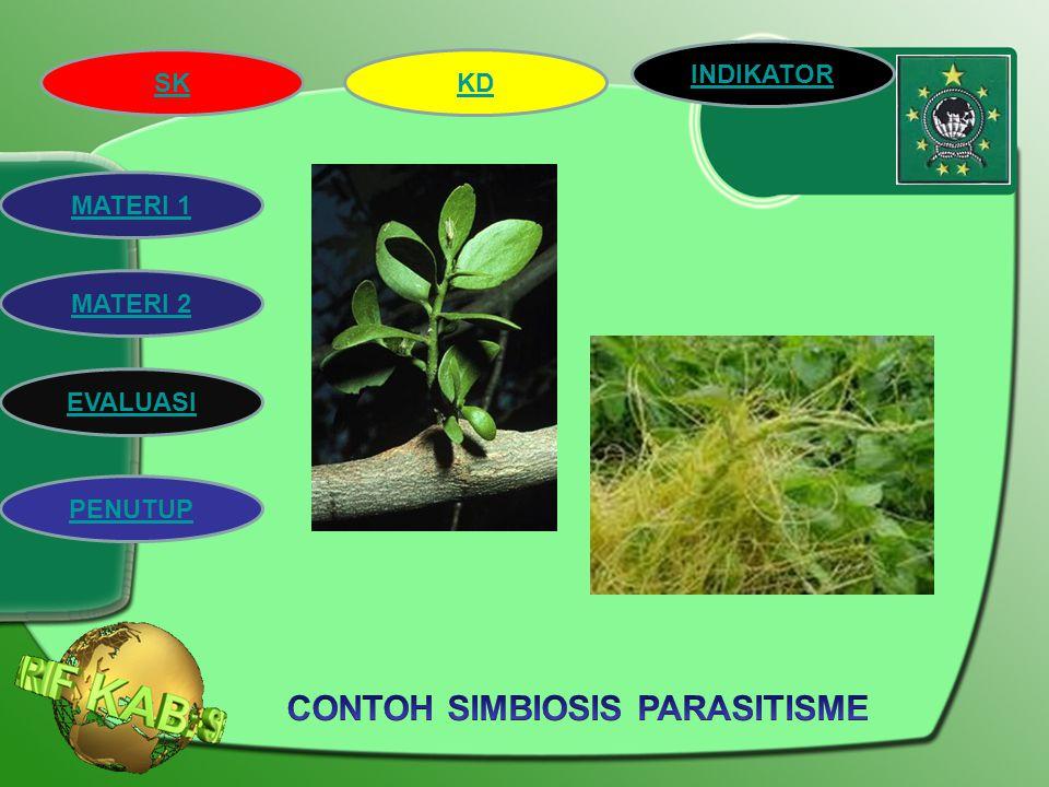 SK INDIKATOR KD MATERI 2 MATERI 1 EVALUASI PENUTUP 3. Simbiosis Parasitisme Simbiosis Parasitisme adalah hubungan yang menguntungkan salah satu pihak,