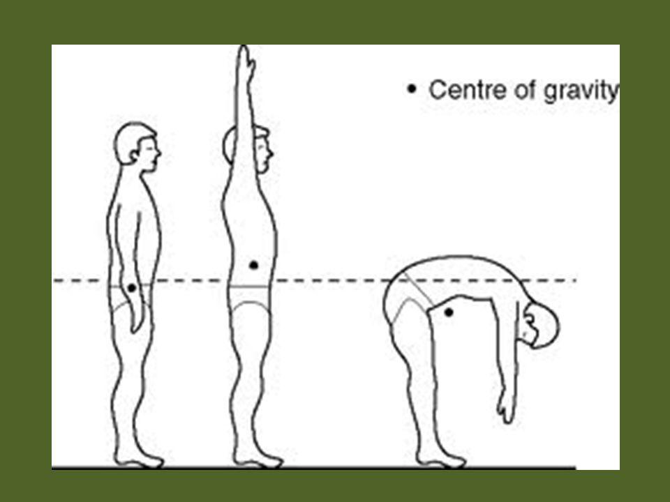 Pergerakan dasar Gerakan (ambulating) Menahan (squatting) Menarik (pulling) Mengangkat (lifting) Memutar (pivoting)