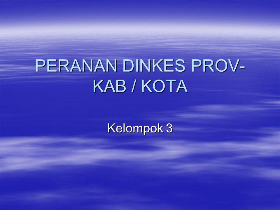PERANAN DINKES PROV- KAB / KOTA Kelompok 3