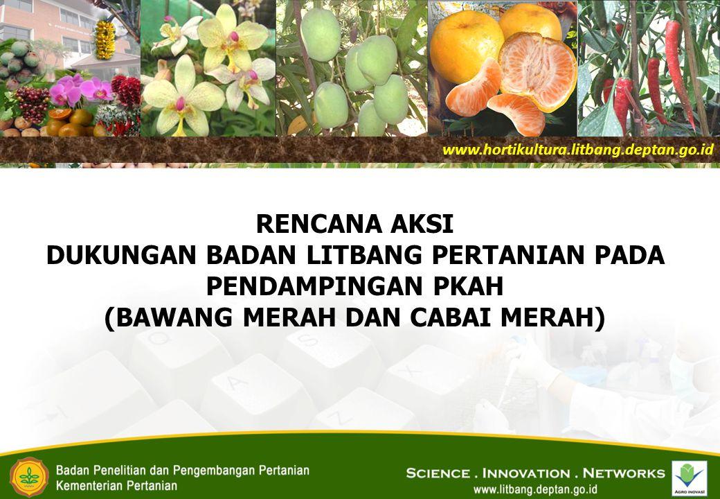 RENCANA AKSI DUKUNGAN BADAN LITBANG PERTANIAN PADA PENDAMPINGAN PKAH (BAWANG MERAH DAN CABAI MERAH) www.hortikultura.litbang.deptan.go.id