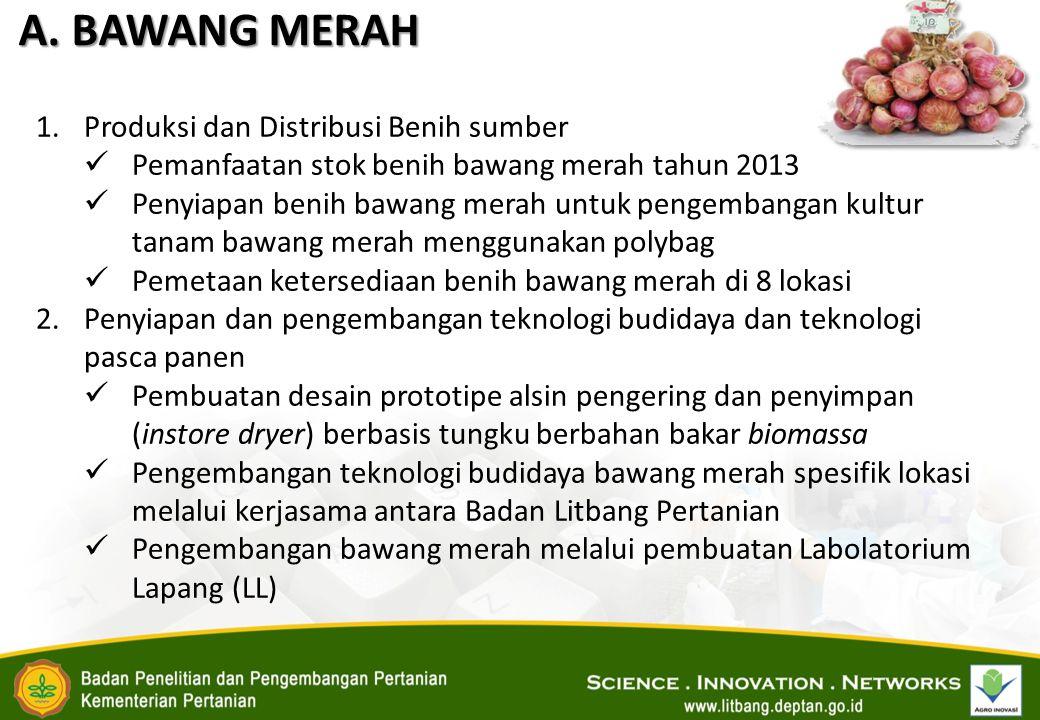 A. BAWANG MERAH 1.Produksi dan Distribusi Benih sumber Pemanfaatan stok benih bawang merah tahun 2013 Penyiapan benih bawang merah untuk pengembangan