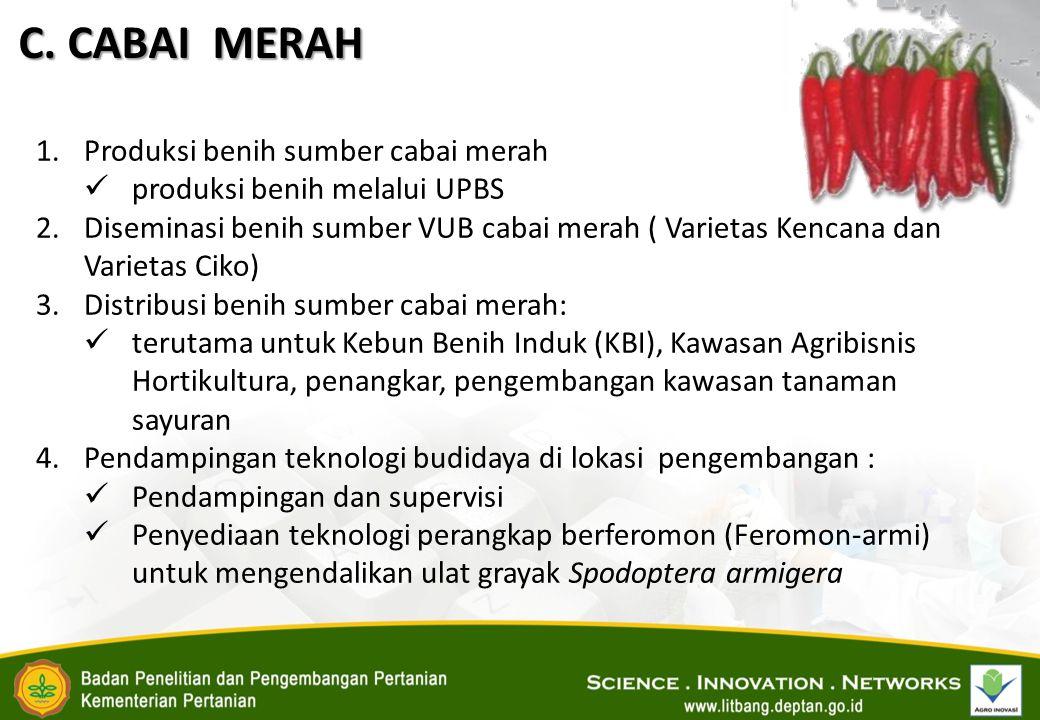 C. CABAI MERAH 1.Produksi benih sumber cabai merah produksi benih melalui UPBS 2.Diseminasi benih sumber VUB cabai merah ( Varietas Kencana dan Variet