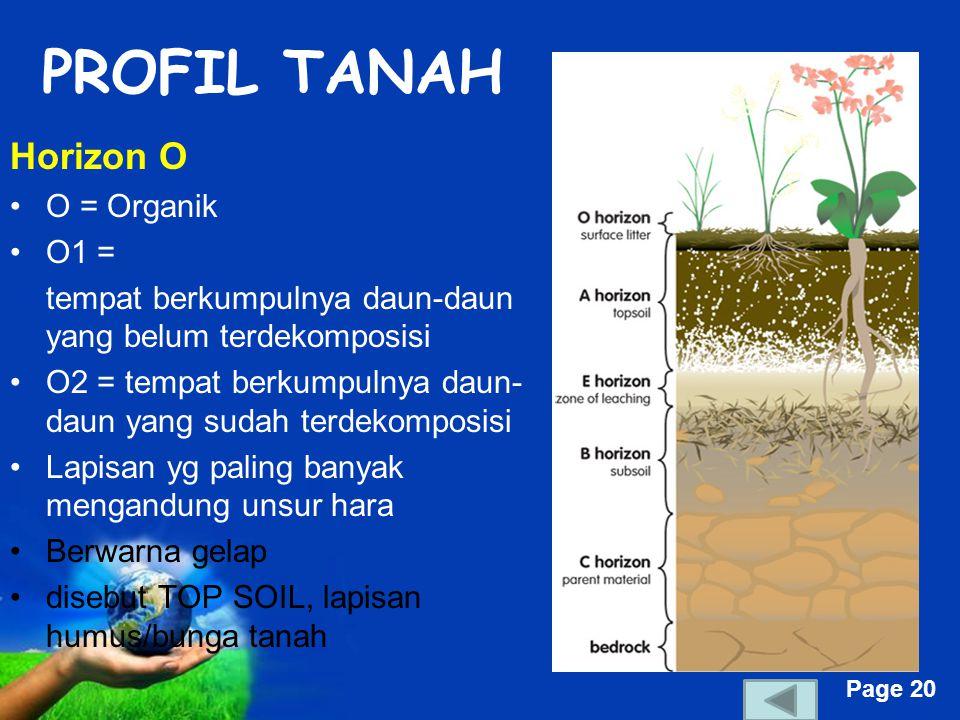 Free Powerpoint Templates Page 20 PROFIL TANAH Horizon O O = Organik O1 = tempat berkumpulnya daun-daun yang belum terdekomposisi O2 = tempat berkumpulnya daun- daun yang sudah terdekomposisi Lapisan yg paling banyak mengandung unsur hara Berwarna gelap disebut TOP SOIL, lapisan humus/bunga tanah