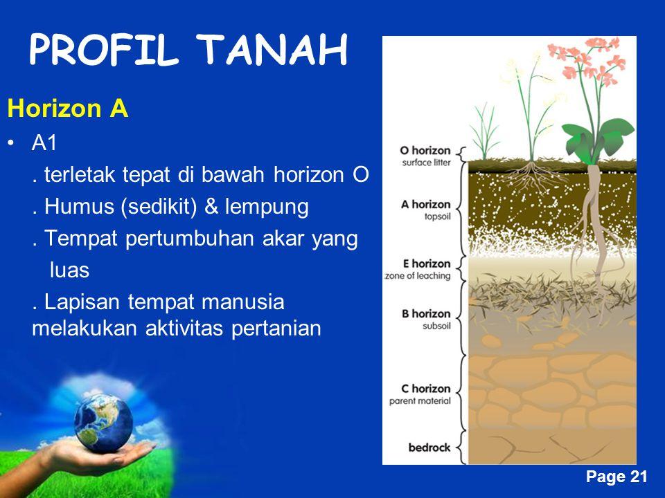 Free Powerpoint Templates Page 21 PROFIL TANAH Horizon A A1.