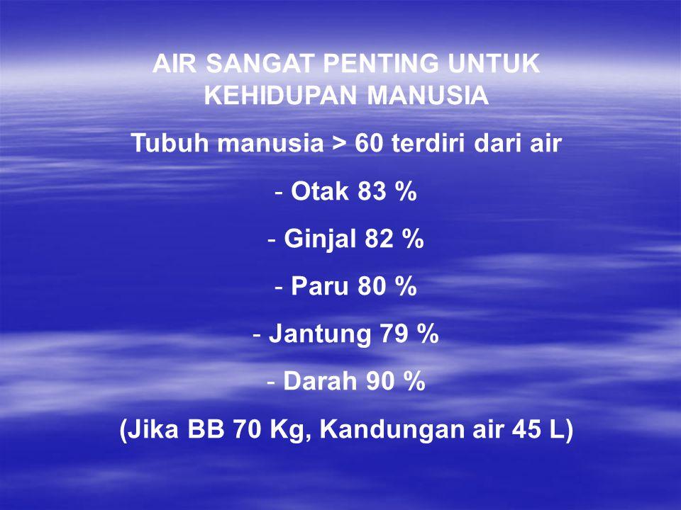 AIR SANGAT PENTING UNTUK KEHIDUPAN MANUSIA Tubuh manusia > 60 terdiri dari air - Otak 83 % - Ginjal 82 % - Paru 80 % - Jantung 79 % - Darah 90 % (Jika