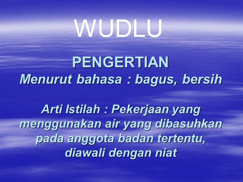 PENGERTIAN Menurut bahasa : bagus, bersih Arti Istilah : Pekerjaan yang menggunakan air yang dibasuhkan pada anggota badan tertentu, diawali dengan ni