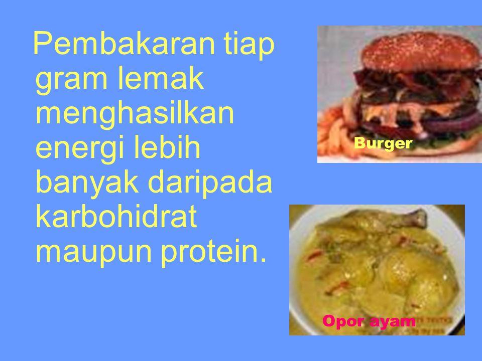 Fungsi / peran lemak dan minyak dalam kehidupan Dalam organisme hidup, lemak berfungsi sebagai sumber energi dan sebagai cadangan makanan.