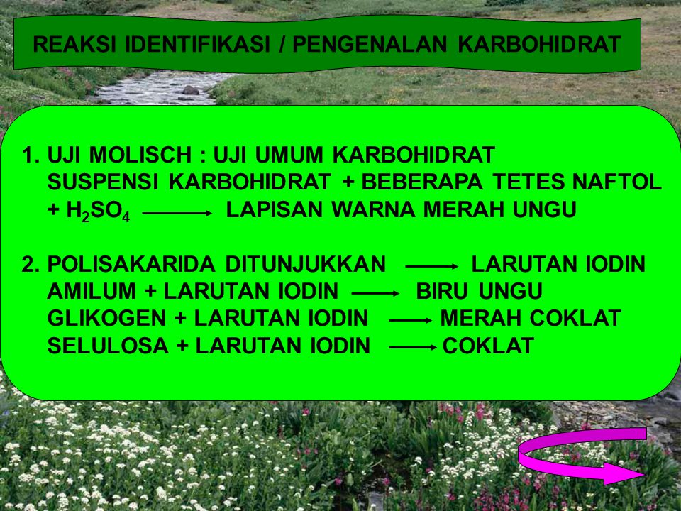REAKSI IDENTIFIKASI / PENGENALAN KARBOHIDRAT 1.UJI MOLISCH : UJI UMUM KARBOHIDRAT SUSPENSI KARBOHIDRAT + BEBERAPA TETES NAFTOL + H 2 SO 4 LAPISAN WARN