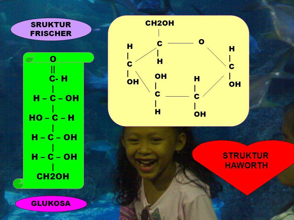 O || C- H | H – C – OH | HO – C – H | H – C – OH | H – C – OH | CH2OH GLUKOSA SRUKTUR FRISCHER STRUKTUR HAWORTH CH2OH C|H C|H H | C | OH OH | C | H H