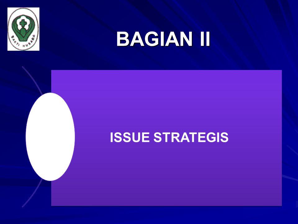 BAGIAN II ISSUE STRATEGIS