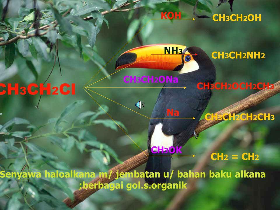 By Yendri Dwifa Tata Nama Halo alkana 1. Posisi atom halogen mendapat nomor terkecil 2.Jika terdapat lebih dari sejenis, prioritas penomoran didasarka