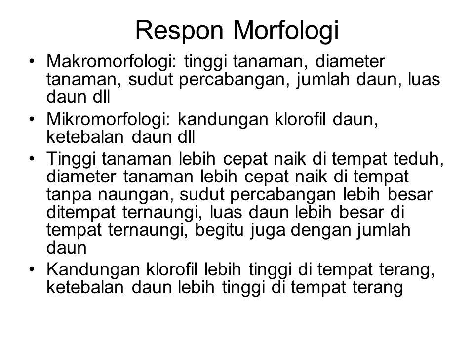 Respon Morfologi Makromorfologi: tinggi tanaman, diameter tanaman, sudut percabangan, jumlah daun, luas daun dll Mikromorfologi: kandungan klorofil da