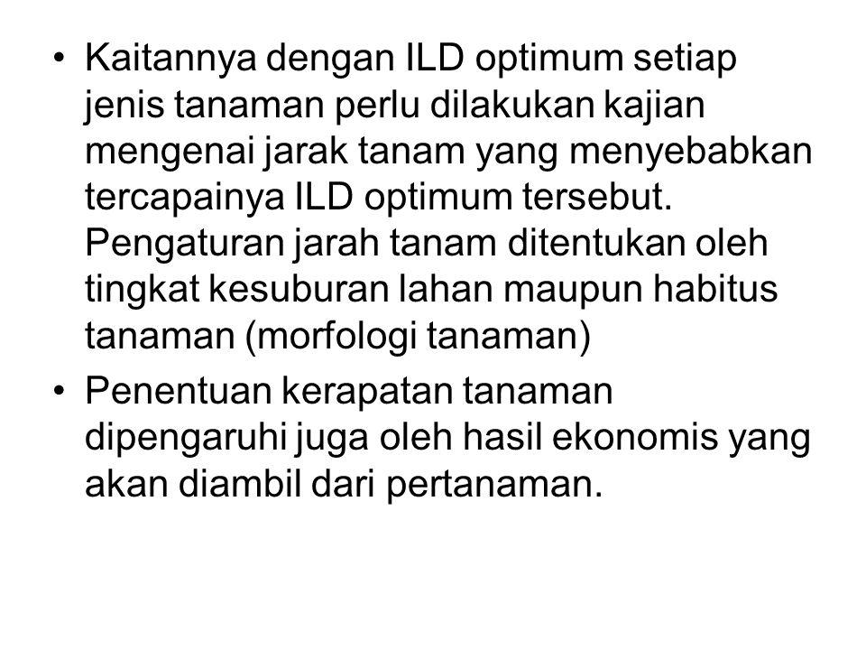 Kaitannya dengan ILD optimum setiap jenis tanaman perlu dilakukan kajian mengenai jarak tanam yang menyebabkan tercapainya ILD optimum tersebut. Penga
