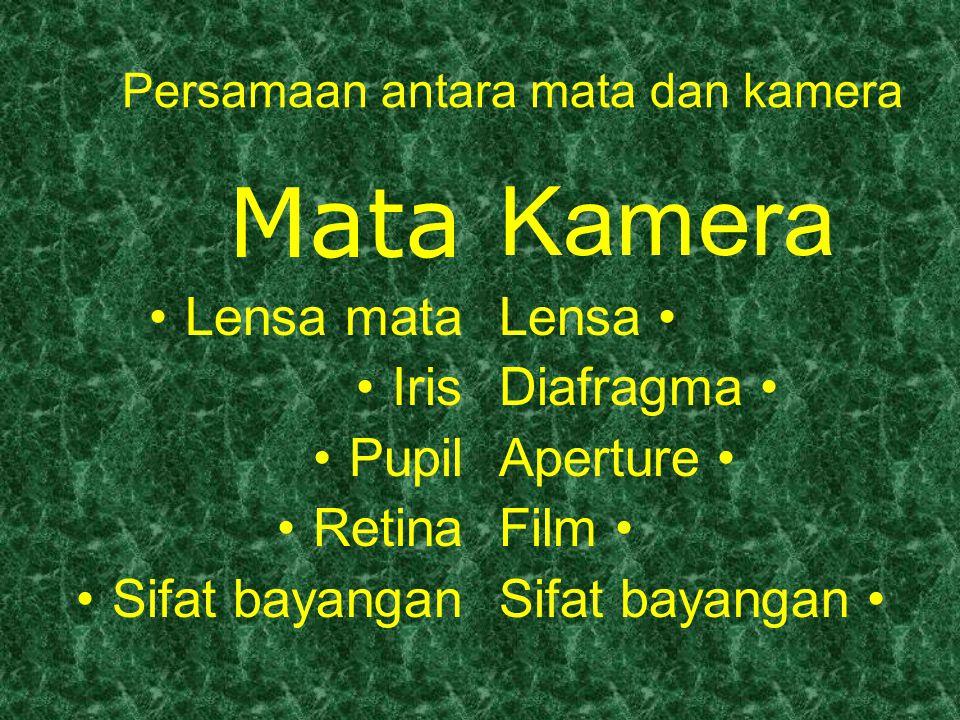 Persamaan antara mata dan kamera Mata Lensa mata Iris Pupil Retina Sifat bayangan Kamera Lensa Diafragma Aperture Film Sifat bayangan