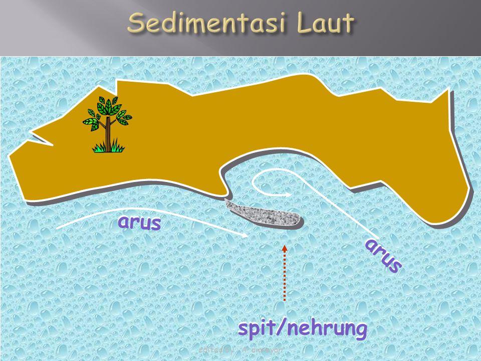 spit/nehrung arus spit/nehrung arus edited by : Ardiansyah