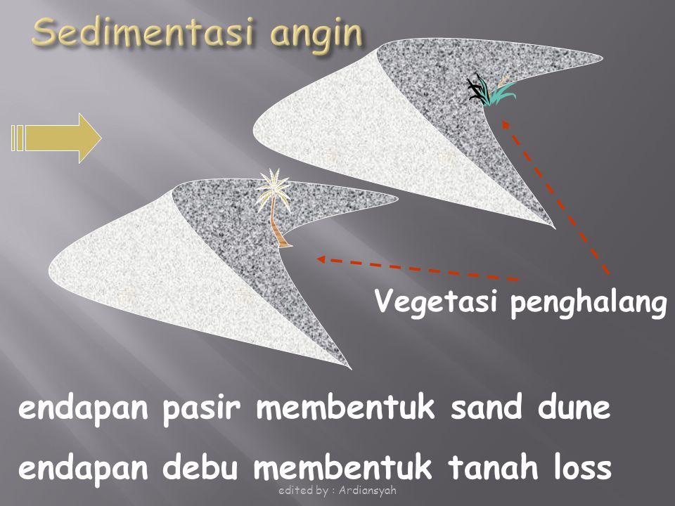 endapan pasir membentuk sand dune endapan debu membentuk tanah loss Vegetasi penghalang edited by : Ardiansyah