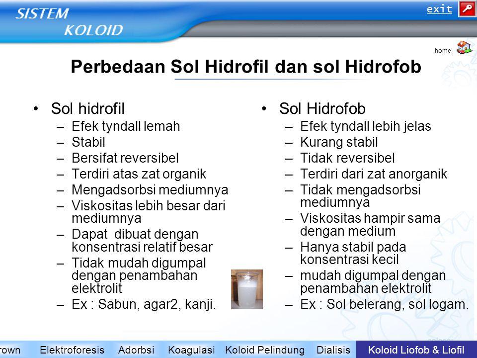 Perbedaan Sol Hidrofil dan sol Hidrofob Sol hidrofil –Efek tyndall lemah –Stabil –Bersifat reversibel –Terdiri atas zat organik –Mengadsorbsi mediumny