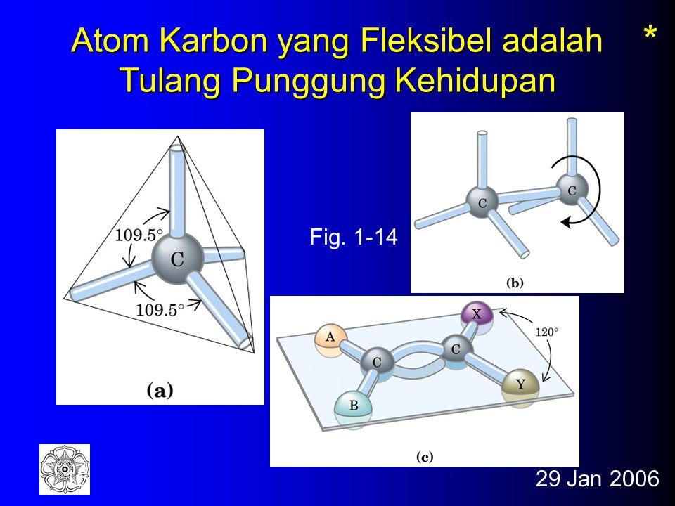 29 Jan 200615 Biomolekul - Komposisi 99% dari sel tersusun dari unsur H, O, N, and C Unsur Elektron tanpa pasangan Jumlah relatif H12/3 O21/4 N31/70 C