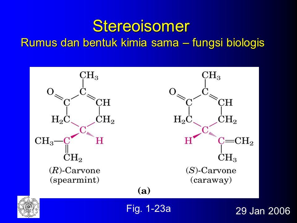 29 Jan 200618 Molekul Khiral bentuk putaran berbeda dengan bentuk bayangan Fig. 1-19a