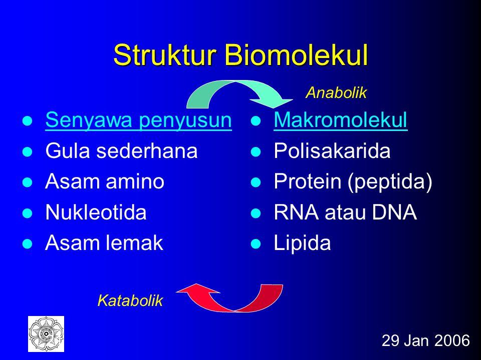29 Jan 200620 Perubahan Biokimia Dapat Dikelompokkan dalam 5 kategori Reaksi pemindahan gugus Reaksi oksidasi-reduksi Penataan kembali (isomerisasi) R