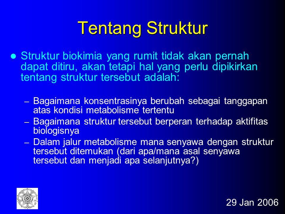 29 Jan 200626 Gugus Fungsional yang Umum Fig. 1-15 *