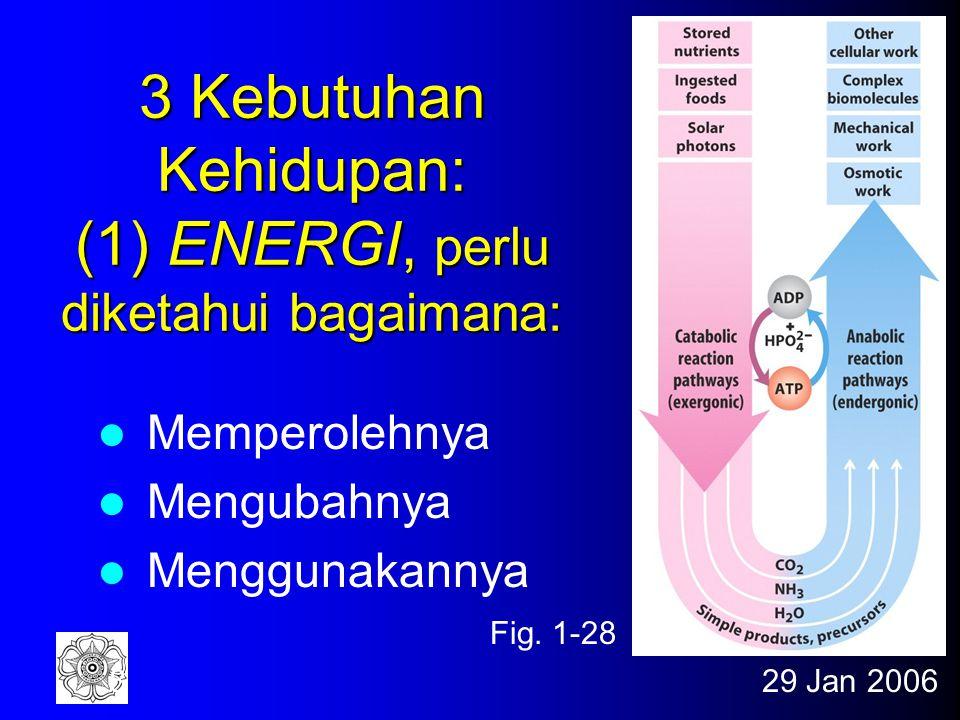 29 Jan 20068 3 Kebutuhan Kehidupan: (1) ENERGI, perlu diketahui bagaimana: Memperolehnya Mengubahnya Menggunakannya Fig.