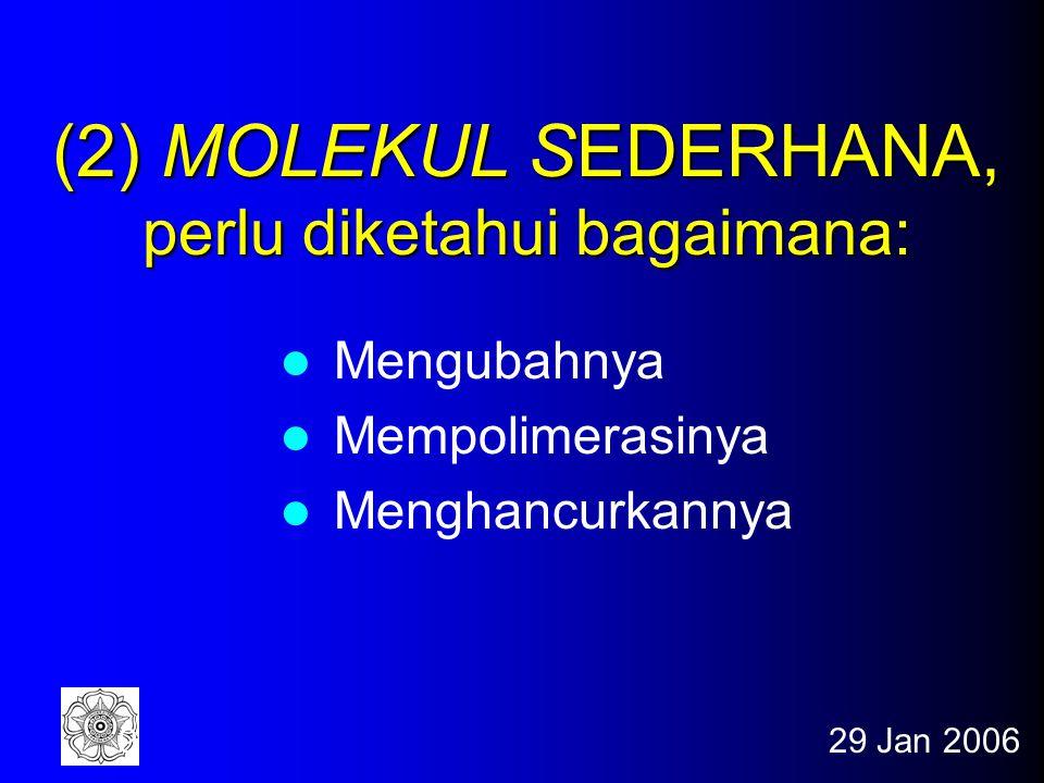 29 Jan 200629 Staf Pengajar Drs.Winarto Hariadi, M.Si.