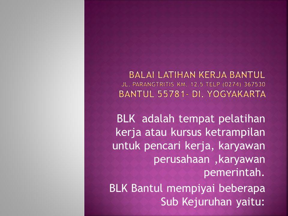 BLK adalah tempat pelatihan kerja atau kursus ketrampilan untuk pencari kerja, karyawan perusahaan,karyawan pemerintah.