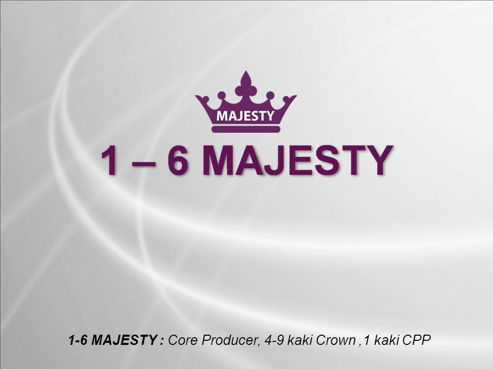 1-6 MAJESTY : Core Producer, 4-9 kaki Crown,1 kaki CPP