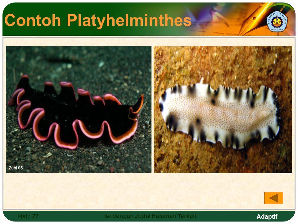 Adaptif Hal.: 26 Isi dengan Judul Halaman Terkait Platyhelminthes (cacing Pipih) Ciri-ciri: a.Tubuh pipih dan simetris b.Mempunyai satu lubang mulut pada dubur c.Bersifat parasit d.3 kelas: 1) cacing getar (turbelaria) 2) cacing isap (trematoda) 3) cacing pita (cestoda)