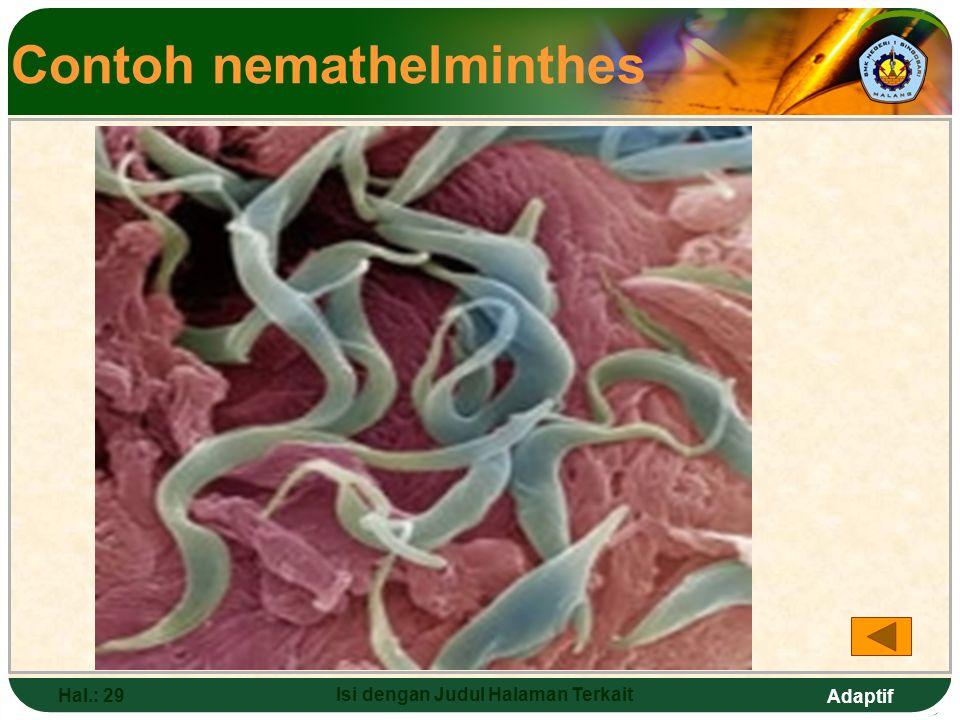 Adaptif Hal.: 28 Isi dengan Judul Halaman Terkait Nemathelminthes (Cacing Gilig) Ciri-ciri: a.Bentuk tubuh bulat panjang dengan ujung runcing b.Kulit licin, tertutup lapisan lilin c.Tubuh simetris, tidak bersegmen d.Hidup bebas e.Parasit pada tumbuhan dan hewan