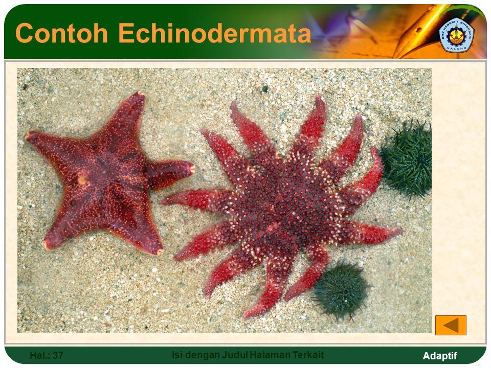 Adaptif Hal.: 36 Isi dengan Judul Halaman Terkait Contoh Mollusca