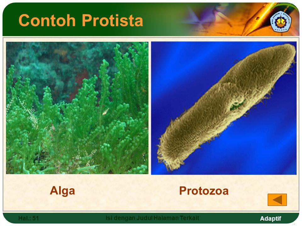 Adaptif Hal.: 50 Isi dengan Judul Halaman Terkait PROTISTA Ciri-ciri: a.Punya sel  bersifat eukariotik (inti sel punya membran) b.Punya ciri peralihan dengan makhluk hidup lain c.Ada yang mirip tumbuhan dan hewan Anggota: a.Protista menyerupai tumbuhan (alga) b.Protista menyerupai hewan (protozoa)